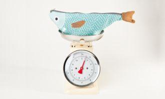 Don Fisher, una marca molona con sabor a mar #unamamanovata #niños ▲▲▲ www.unamamanovata.com ▲▲▲