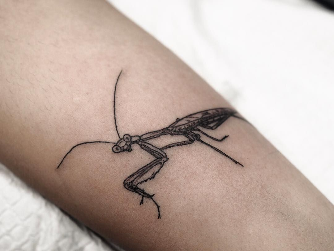 Sophia Baughan On Instagram Little Praying Mantis From The Darling Parlour Flash Weekend Thankyou To Everyone Who Mom Tattoos Mantis Tattoo Small Tattoos