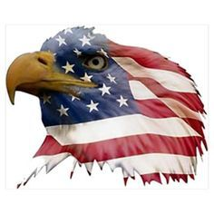 Patriotic Bald Eagle Clipart