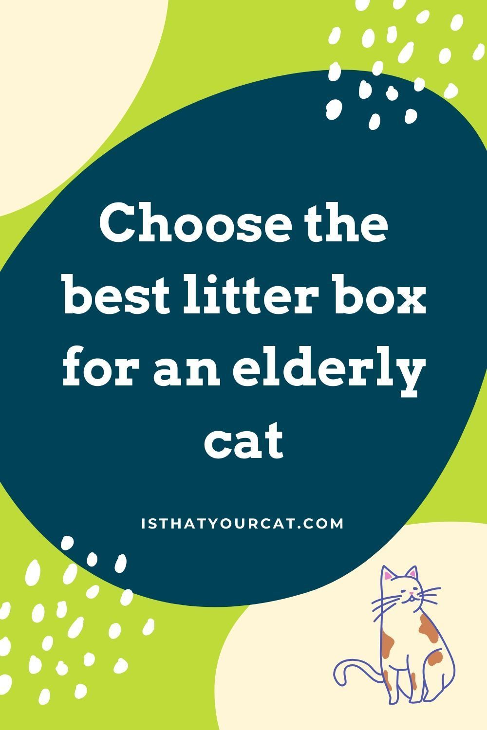 What Is The Best Litter Box For Elderly Cats In 2020 Litter Box Best Litter Box Best Cat Litter