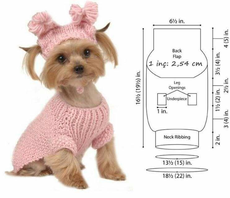 Pin de Alis Tada en Bruno | Pinterest | Mascotas, Ropa para perros y ...