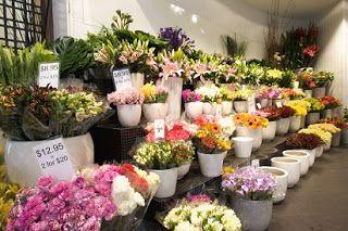 toko bunga mawar di solo a76088a8db