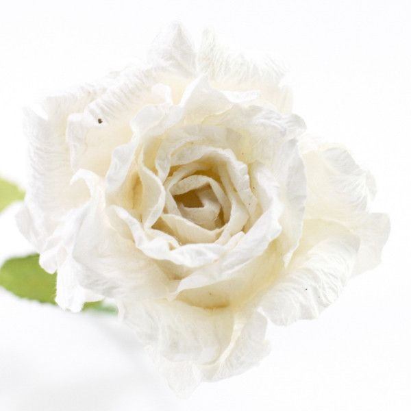 Large Long Stemmed Paper Rose White Paper Flowers Australia