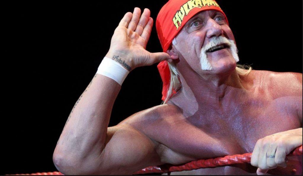 WWE 2K18 Favorite Roster