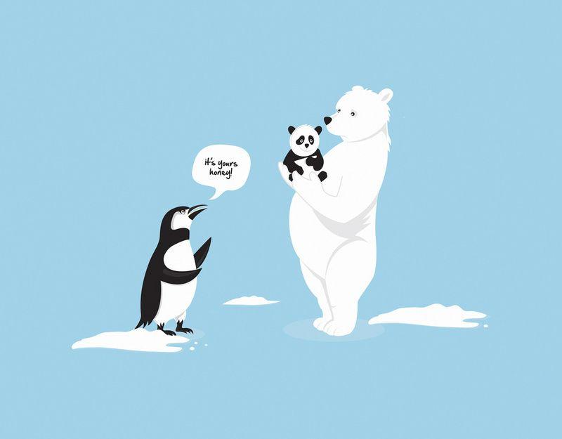 How Panda's are Born #Panda #Penguin #LOL #Funny