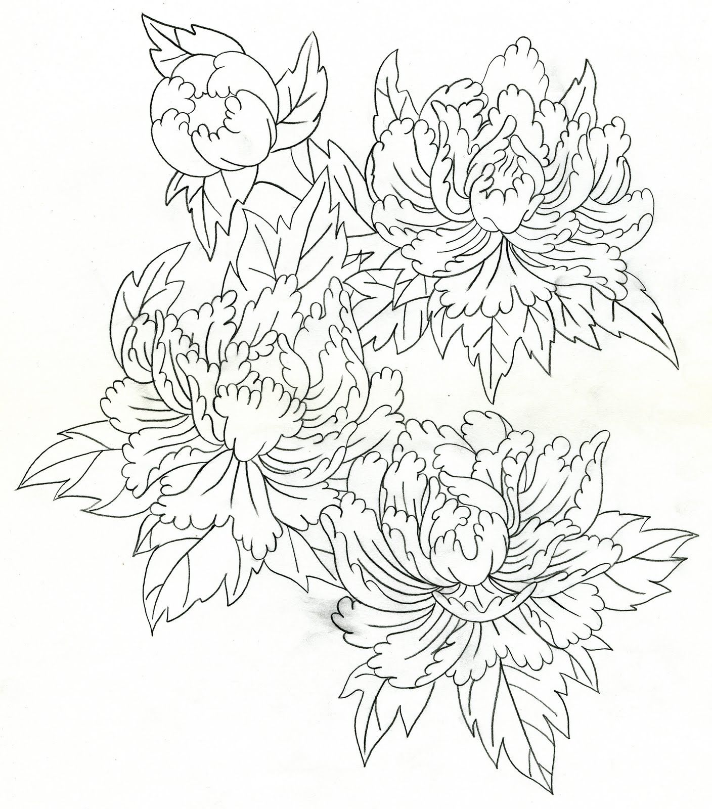 japanese peony tattoo 絵