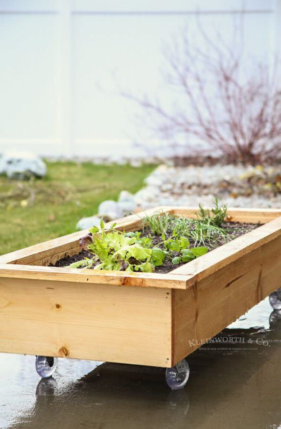 12 Brilliant Container Vegetable Gardening Ideas | The Garden Glove