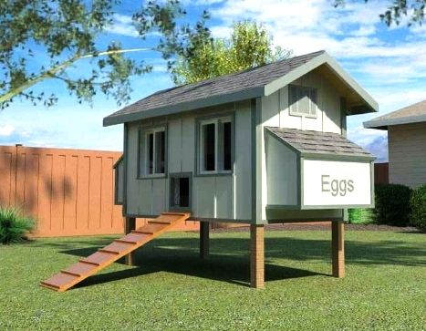 Daisy Coop W Run Building Plans 12 Chickens Chicken Coop Designs Coop Plans Diy Chicken Coop