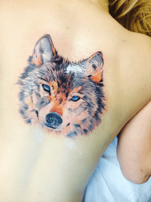 Colored Wolf Tattoo Designs and Ideas on Upper Back