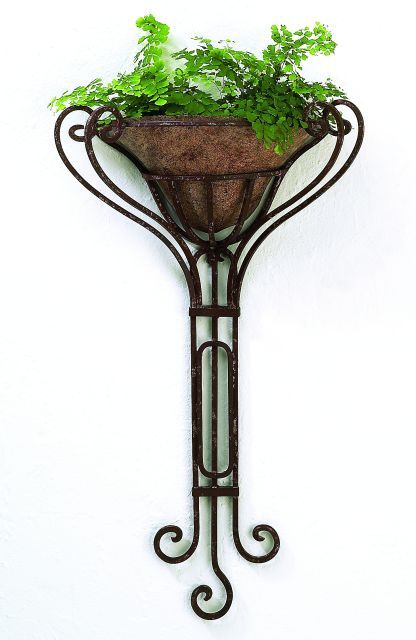 Metal Wall Planter edita wrought iron wall planter with removable liner | metal wall