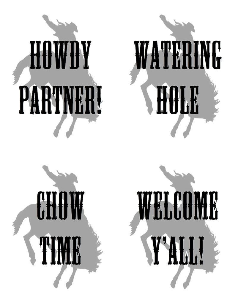 Rodeo Western Cowboy Twin