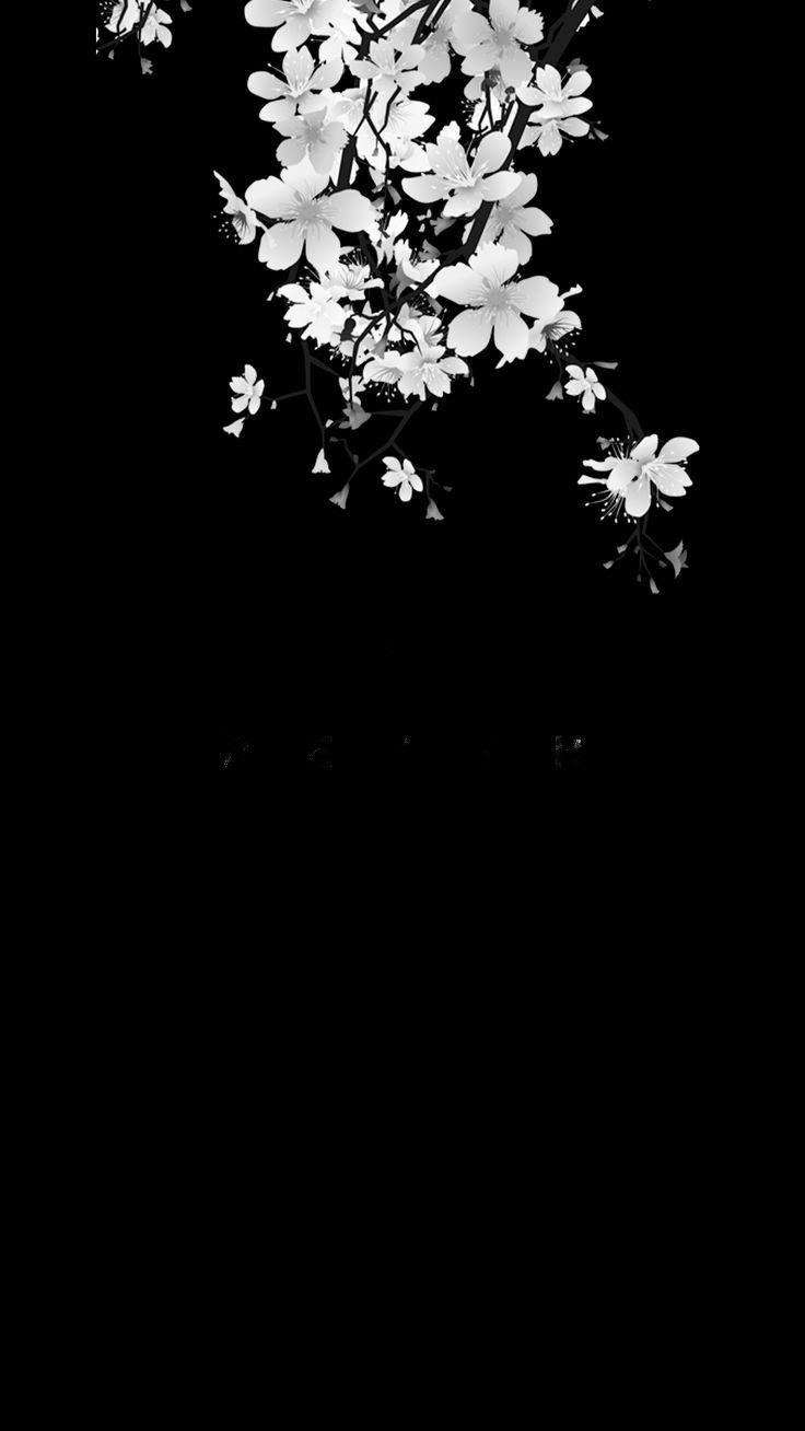 Black background white flowers removed text death graphene black background white flowers removed text death graphene black and white aesthetics pinterest white flowers and black backgrounds mightylinksfo