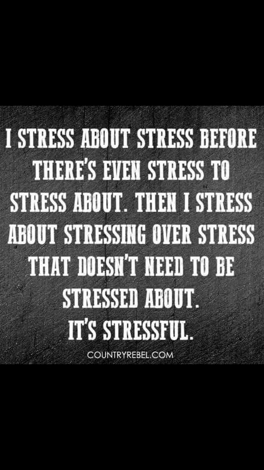 I Stress About Stress About Stress Before Thereu0027s Even Stress To Stress  About. Then I Stress About Stressing Over Stress That Doesnu0027t Need To Be  Stressed ...