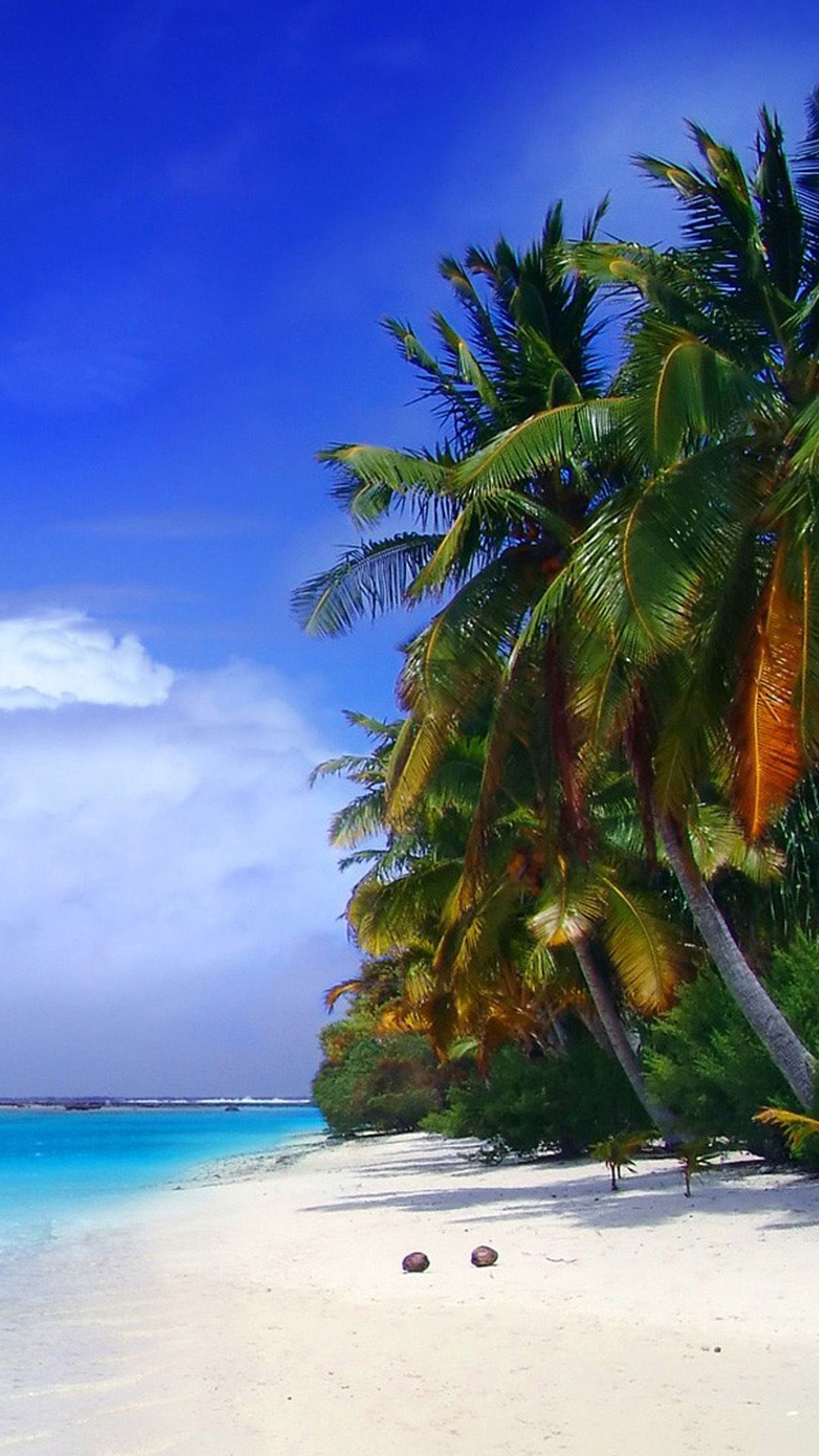 Sunny Beach Wallpapers For Android sunny beach