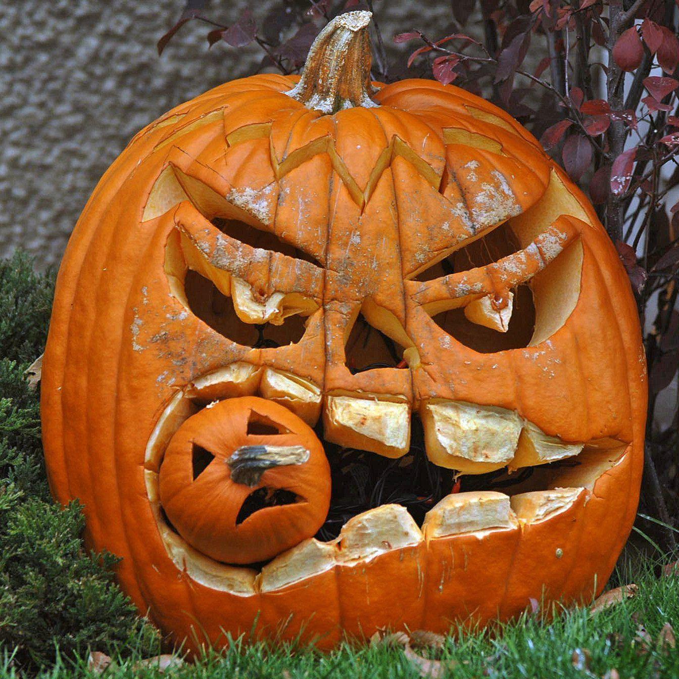Før vi begyndte at fejre Halloween var græskar stort set kun en spise for den…
