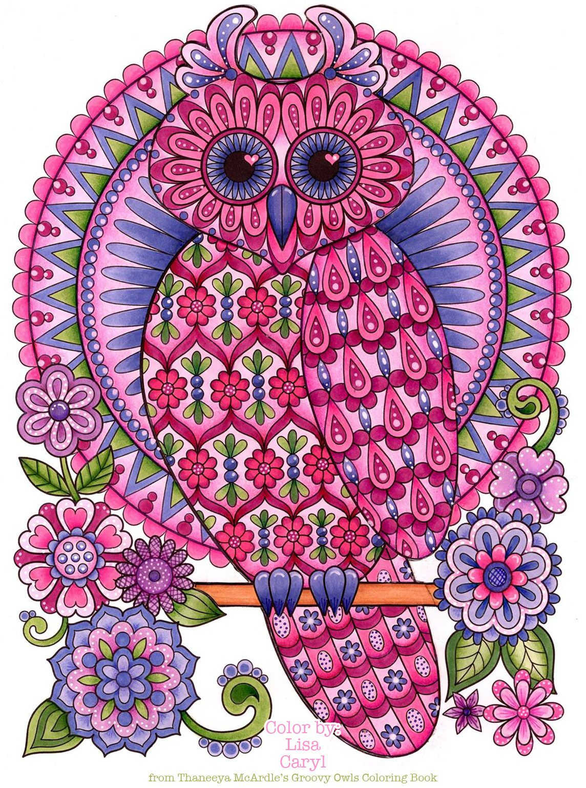 Owl Coloring Page From Thaneeya Mcardle S Groovy Owls Coloring Book Owl Coloring Pages Coloring Book Art Animal Coloring Pages