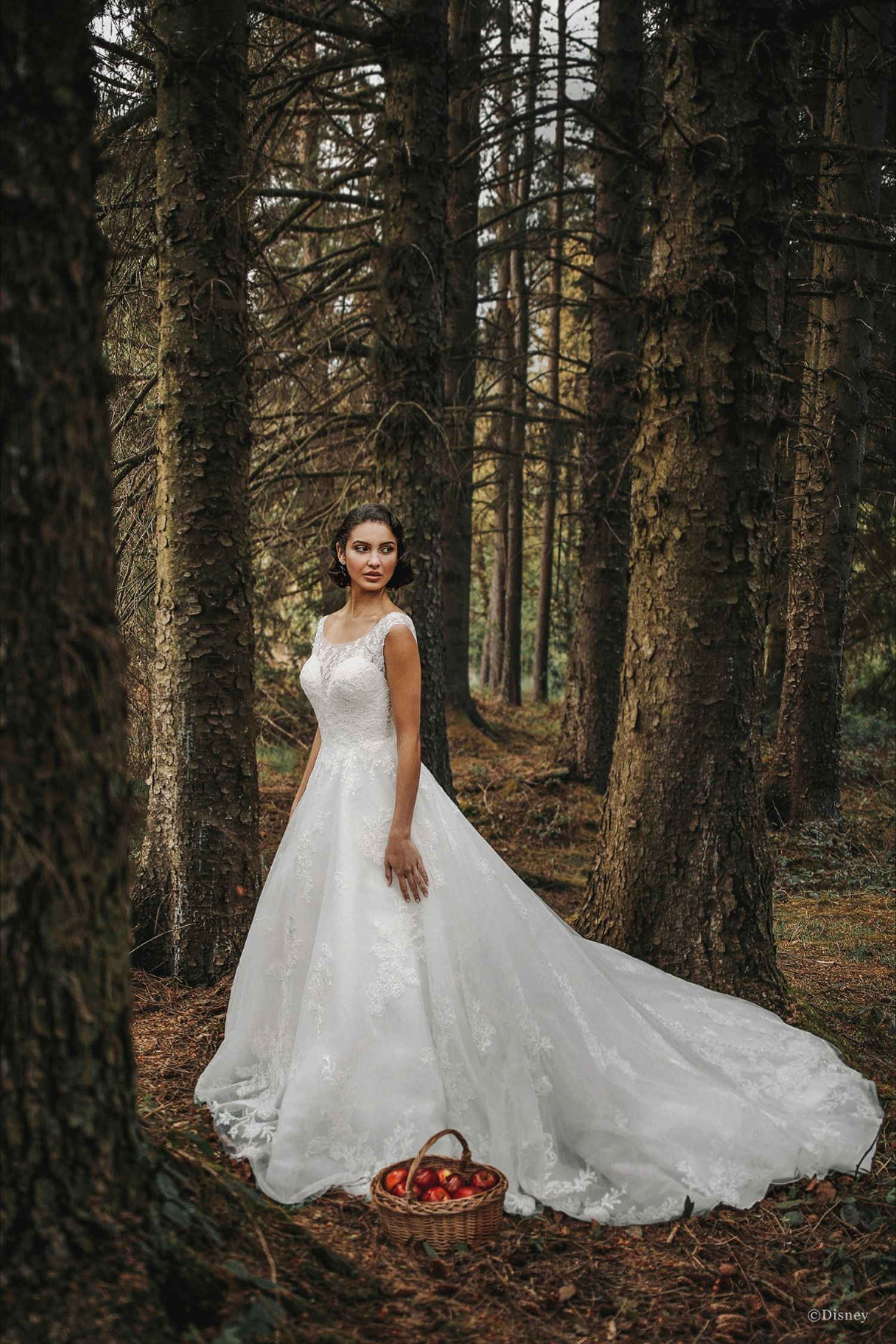 The Snow White Wedding Gowns The Bridal Collection Disney Wedding Dresses Disney Wedding Dress Collection Allure Bridal [ 2249 x 1500 Pixel ]
