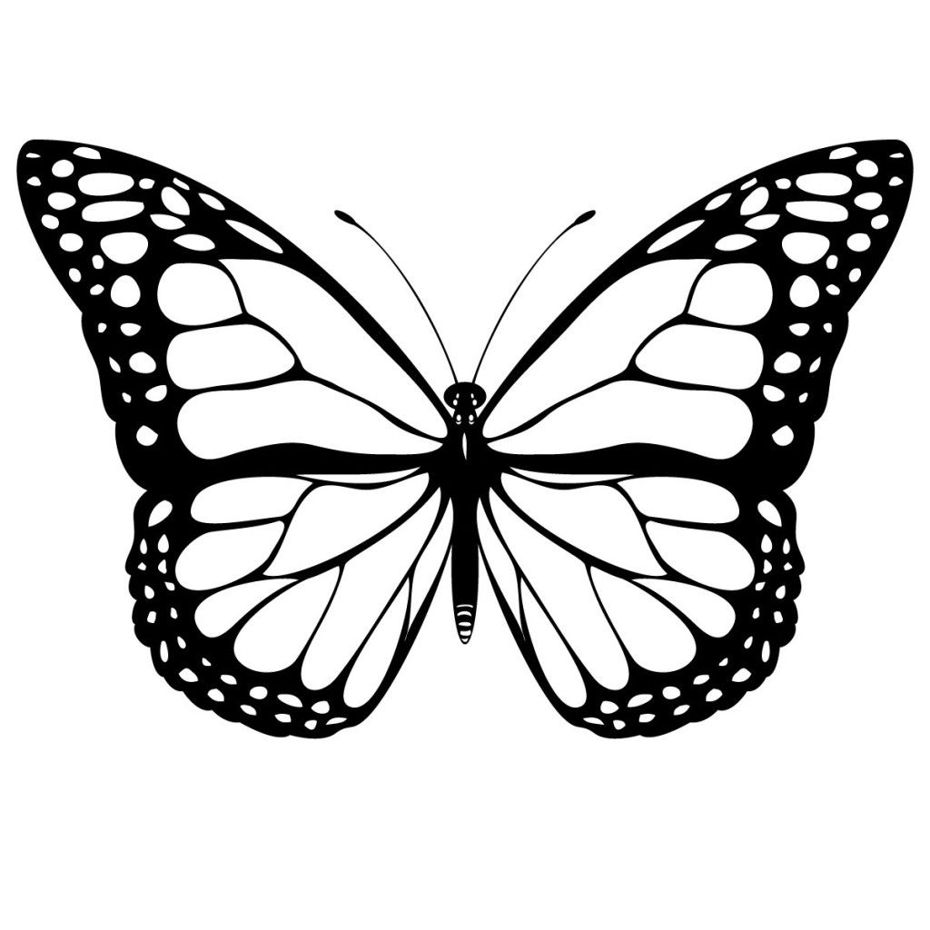 Free Printable Butterfly Coloring Page | butterflies in 2018 ...