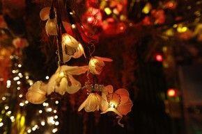 Luminárias de plantas 2 (Foto: Gshow/Raphael Dias)