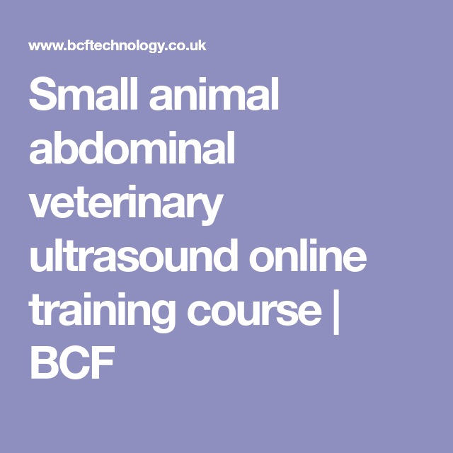 Small Animal Abdominal Veterinary Ultrasound Online Training Course
