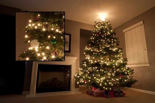 How To Get Your Christmas Tree Lights To Sparkle Christmas Tree Photography Led Christmas Tree Lights Christmas Tree Lighting