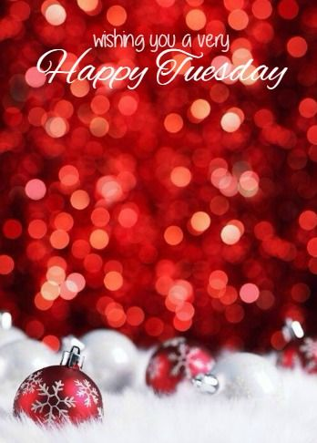 Happy Tuesday … | Good morning christmas, Happy tuesday, Tuesday quotes