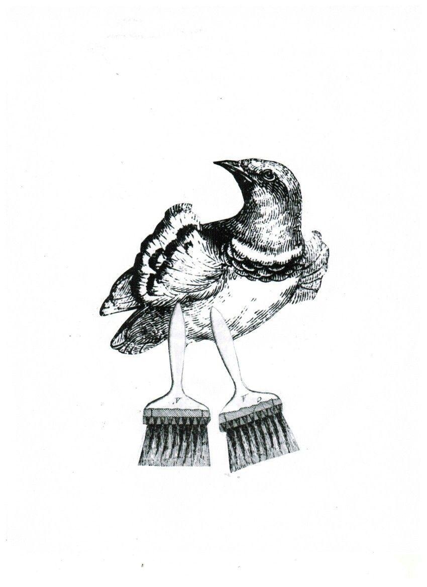 Pájaro-brocha