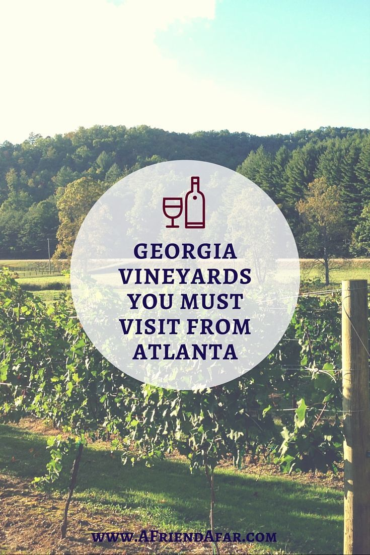 Five Wineries To Visit In North Georgia