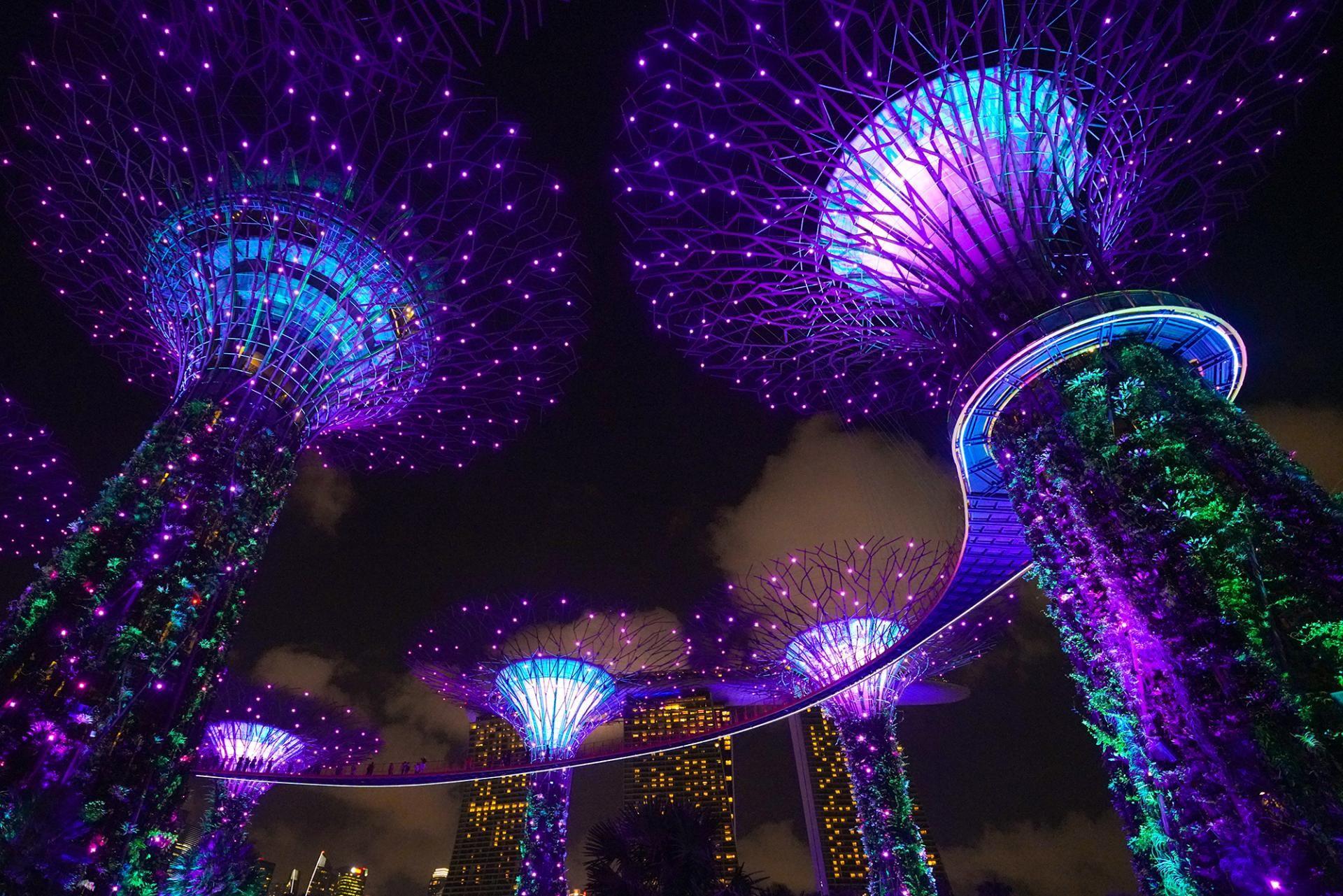137a6633c641e4fb0813cfcff8eb0a65 - Marina Bay Gardens Light Show Time