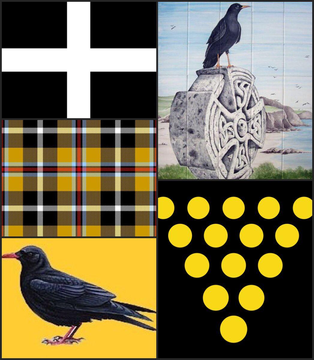 Cornish symbols St Piran's Flag (white cross /black