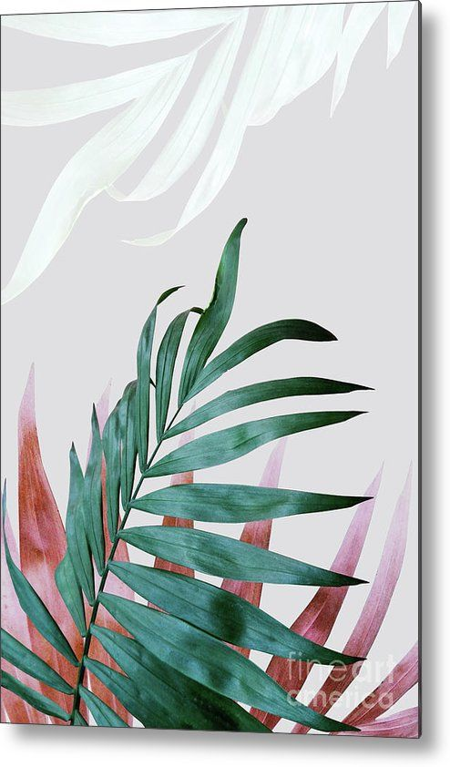 Green Tropical Leaves, Fern Plant Metal Print by PrintsProject