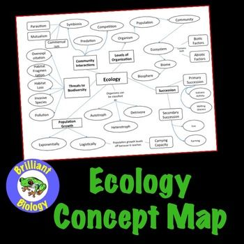 Ecology Concept Map Living Environment Ecology Branches Of