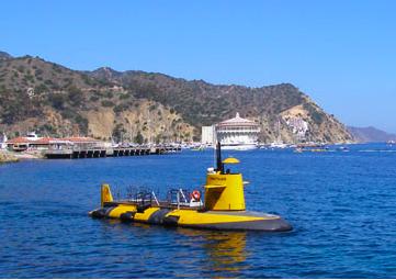 Things to Do in Catalina with Kids Santa catalina island