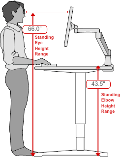 Human Solution Standing Desk Dimensions Workstation