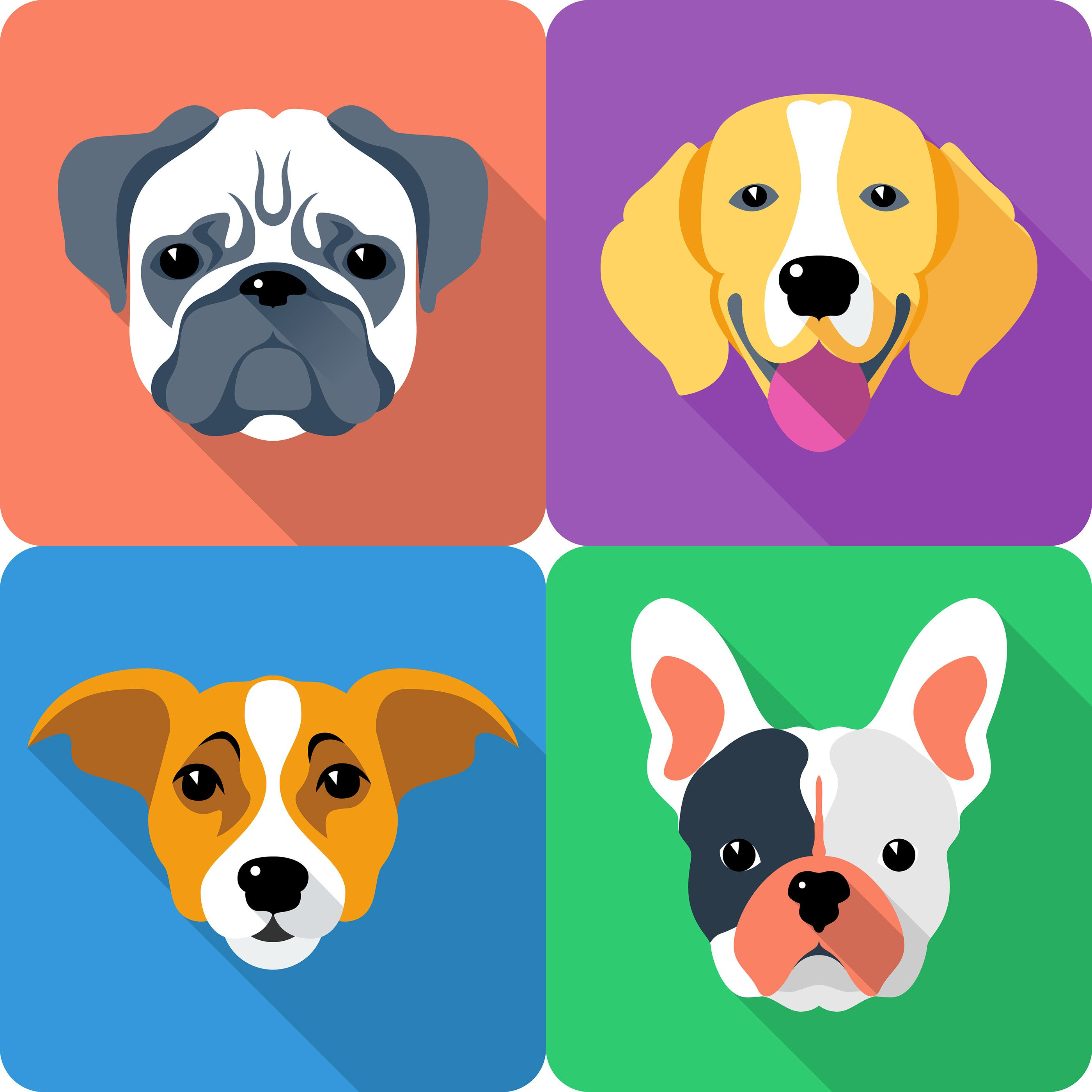 Set icon flat design for dog head different breeds on