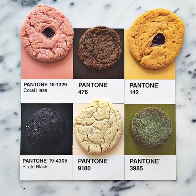 Now This Is My Kind Of Pantone Color Chart Cookie