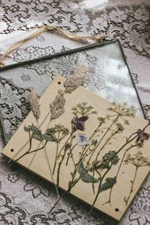 Gepresste wilde Blumen in Glasrahmen   #Flowers #Frames #glass #Pressed #Wildtie…