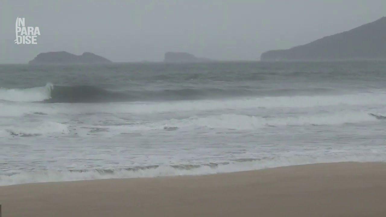 Praia Brava 09 de Setembro 2020 - 10h00
