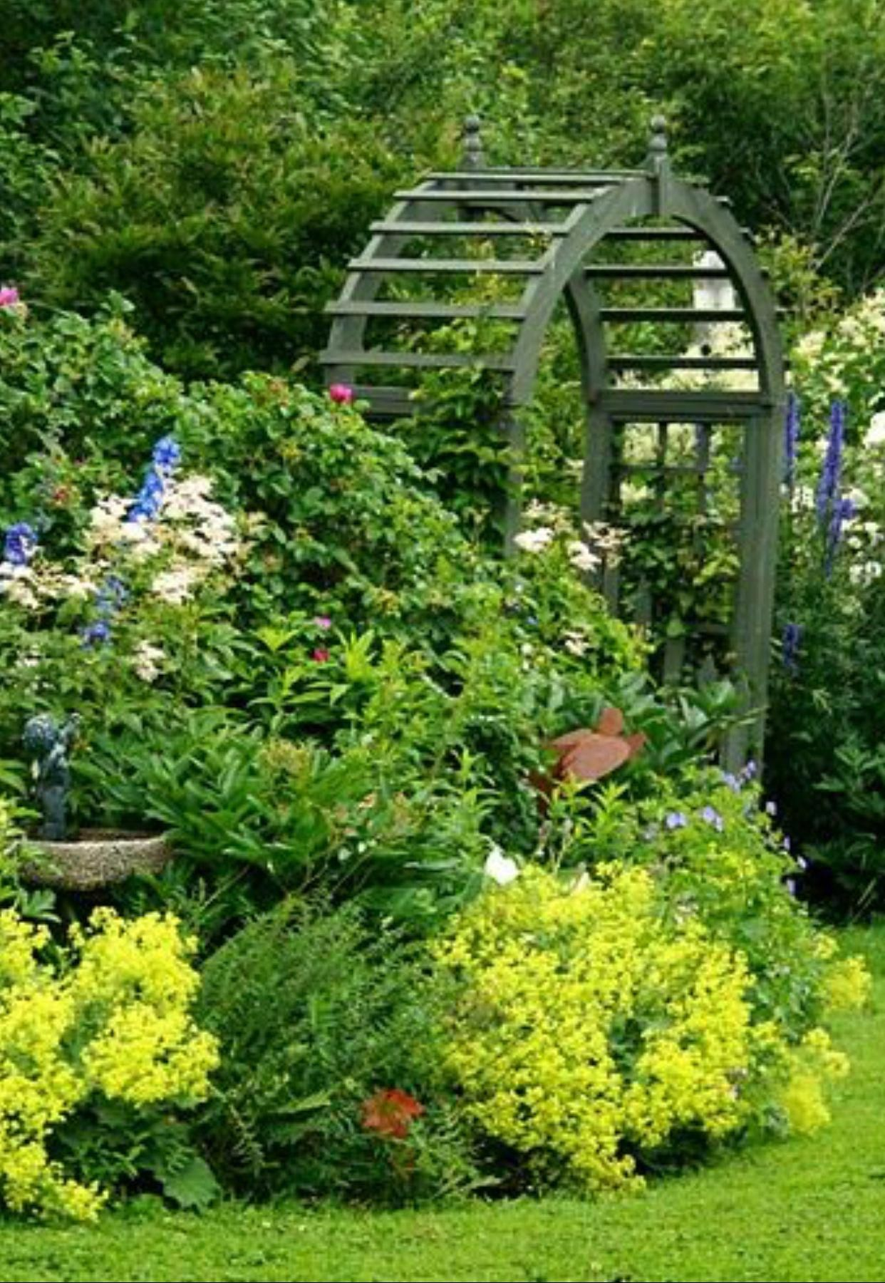 Landscape Gardening Ideas Nz | Backyard garden, Garden ...