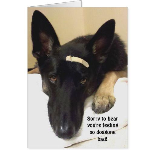 Get Well Feeling So Doggone Bad Card Zazzle Com Feelings