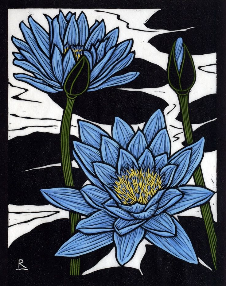 Blue Waterlily Rachel Newling Linocut Art Linocut