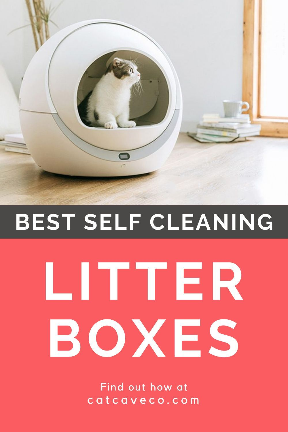 Best Self Cleaning Litter Boxes For Cats In 2020