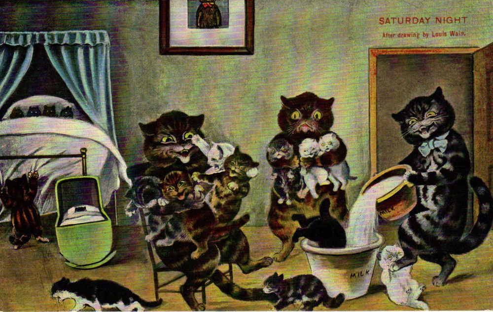 1908 Louis Wain Cats Feeding Kittens Excellent Condition Posted Feeding Kittens Cat Feeding Cats