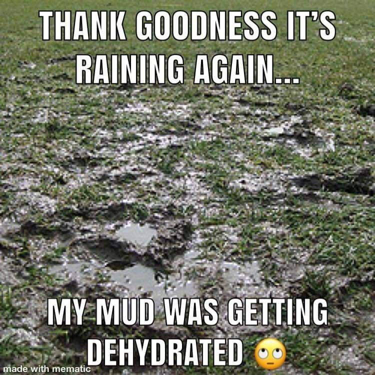 Happy Rainy Day Meme
