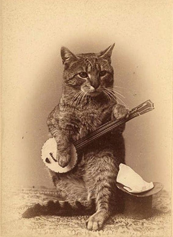 Banjo-playin'