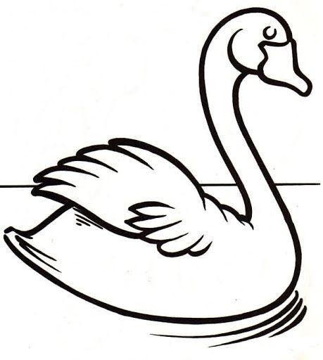 Dibujos y Plantillas para imprimir: Dibujos de Cisnes para imprimir ...