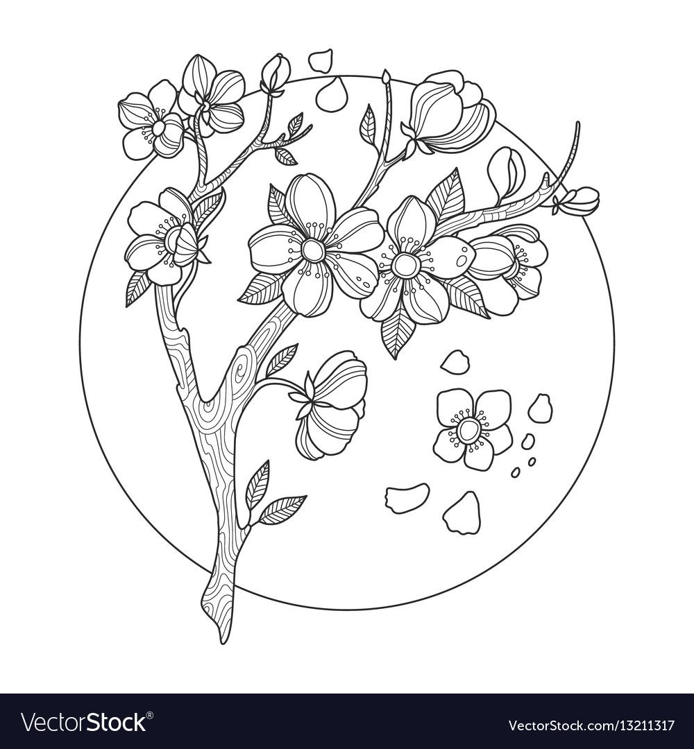 Pin By Florencia Gimenez On Products I Love In 2020 Cherry Blossom Drawing Cherry Blossoms Illustration Cherry Blossom Outline