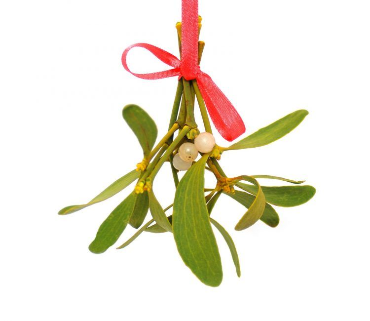 Why Do People Kiss Under Mistletoe? Look Back At The