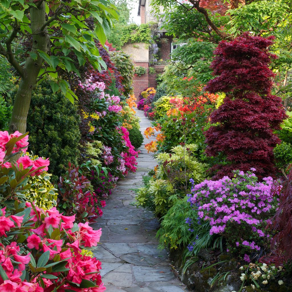 Pathway through the spring middle garden