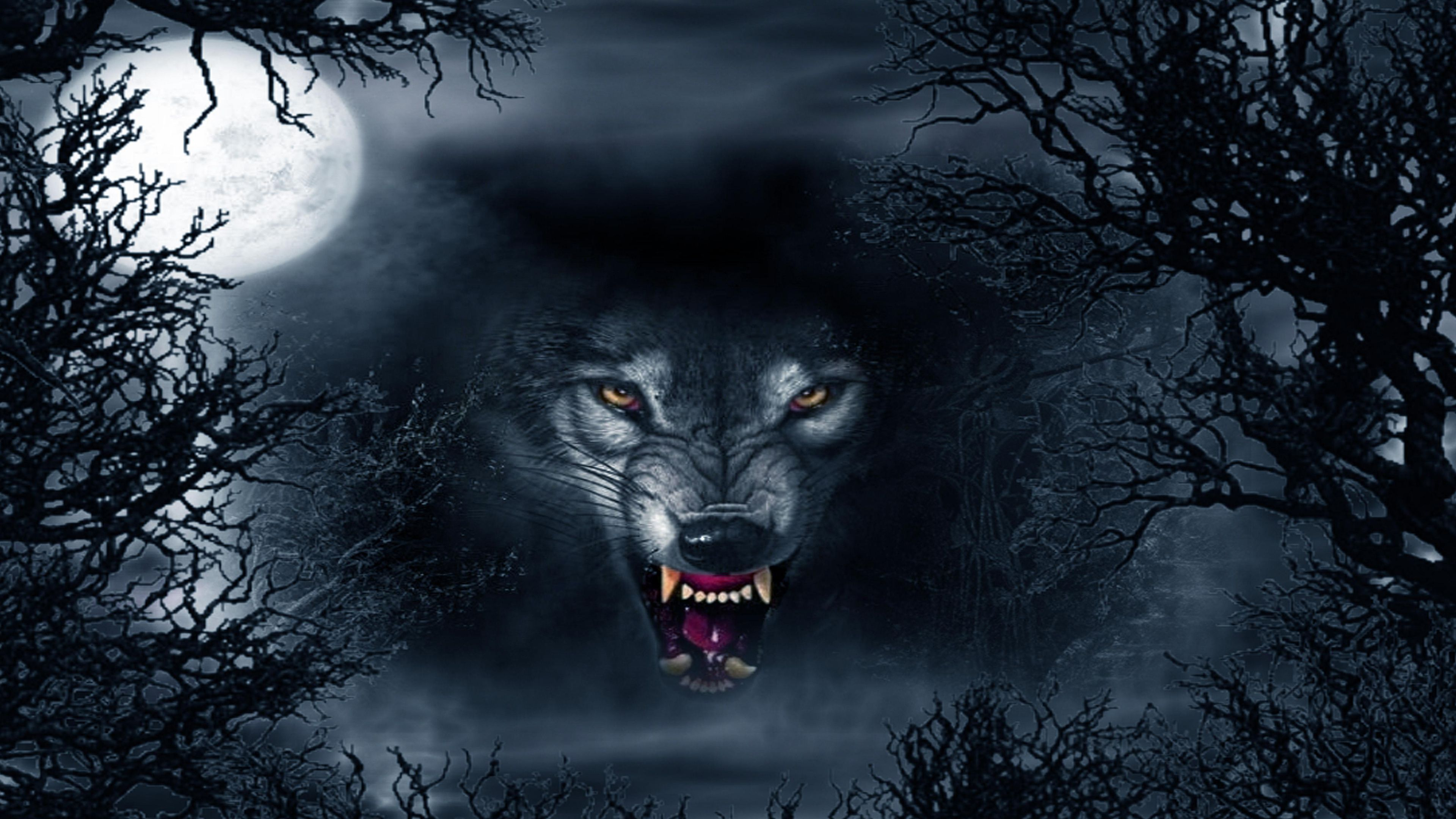 Evil wolf Abstract Ultra HD 4K Wallpapers Shadow wolf